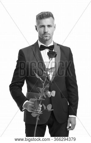 Tuxedo Man With Rose Flower. Happy Valentine Day. Special Occasion. Male Formal Style Of Clothing. E