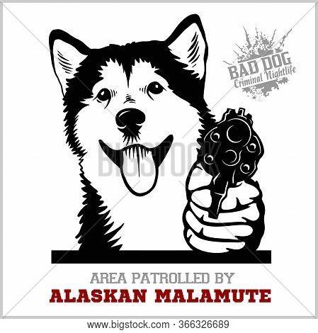 Alaskan Malamute Dog With Revolver Gun - Alaskan Malamute Gangster. Head Of Funny Alaskan Malamute