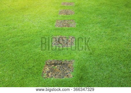 A Row Porous And Rough Suface Of Brown Laterite Steping Stone, Square Form On A Fresh Green Zoysia G