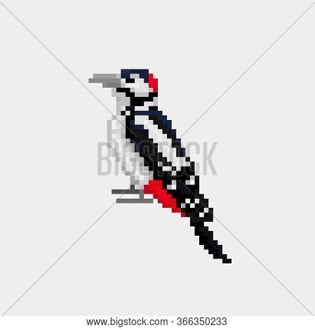 Vector Pixel Art Bird Woodpecker Isolated 8 Bit