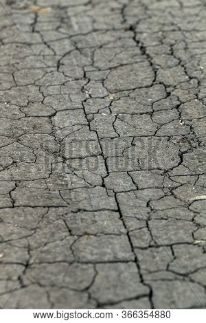 Cracked Earth. Concept: Cracks On Surface Of Earth Change As Result Of Shrinkage Of Dirt Due To Arid