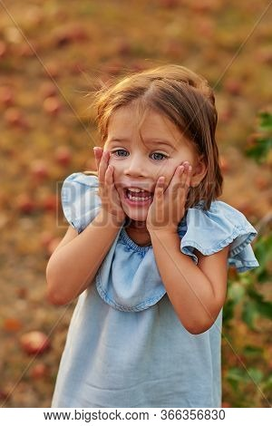 Girl In Apple Orchard. Beautiful Girl Eating Organic Apple In Orchard. Harvest Concept. Garden, Todd