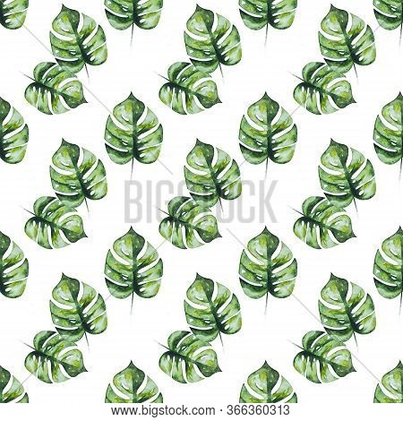 Watercolor Drawing Of Mostera Green Leaf's Isolated On White Background. Seamless Pattern With Green