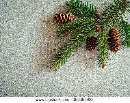 Fir Branch With Pine Cone On The Silver Glitter Light Bokeh Abstract Texture. Sparkle Wallpaper For