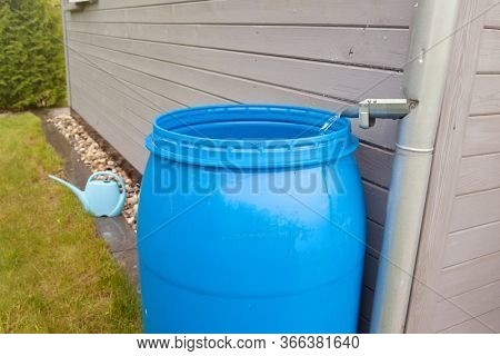 Rain water rainwater harvesting collesting in the garden into a plastic barrel. Ecological system for plants watering