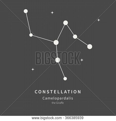 The Constellation Of Camelopardalis. The Giraffe - Linear Icon. Vector Illustration Of The Concept O
