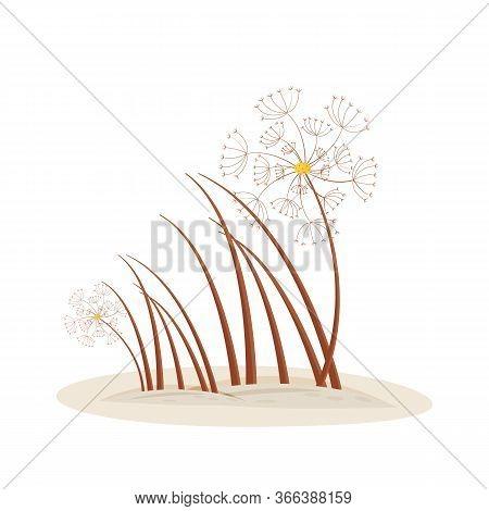 Dandelion Cartoon Vector Illustration. Spring Foliage Grow From Ground. Garden Summer Grass. Seasona