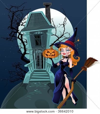Halloween Witch Near The Magic House