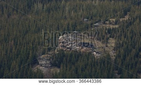 Dominant Rock In A Forested Slope, Jeseniky, Czech Republic. Rock Is Situated Below Kamzici Vrch (11