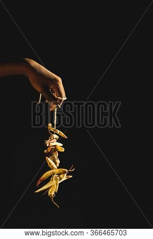 Lemon And Red Chilies Tied With Thread And Tied For Hanging On Human Hand Isolated On Black Backgrou