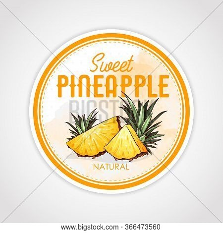 Round Label Or Sticker Design In Vintage Style With Pineapple Illustration. Sweet Natural Pineapple.