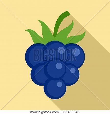 Diet Blackberry Icon. Flat Illustration Of Diet Blackberry Vector Icon For Web Design