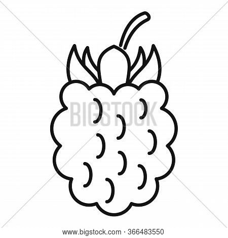 Blackberry Icon. Outline Blackberry Vector Icon For Web Design Isolated On White Background