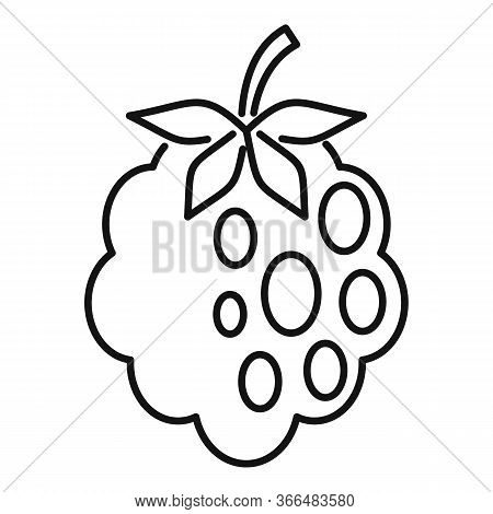 Delicious Blackberry Icon. Outline Delicious Blackberry Vector Icon For Web Design Isolated On White
