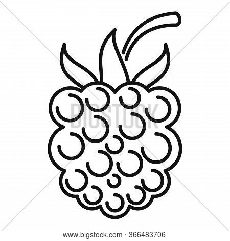 Forest Blackberry Icon. Outline Forest Blackberry Vector Icon For Web Design Isolated On White Backg