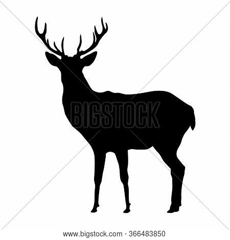 Deer Shape, Vector Design Isolated On White Background.