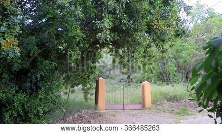 Stone Pillars And Gate In Rural Andalusia