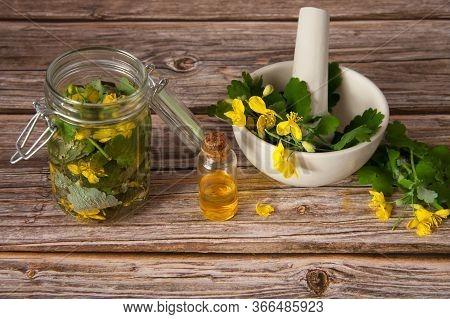 Herbal Alternative Medicine. Alcohol Tincture And Celandine Juice For Treatment. Celandine Leaves In