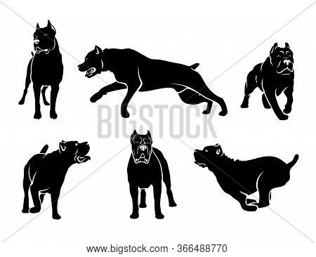 Set Of Cane Corso Dog Silhouettes - Isolated Vector Illustration