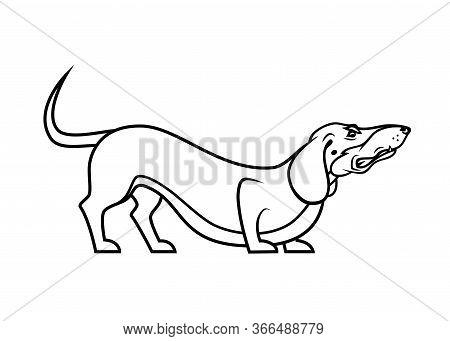 Dachshund Dog - Isolated Vector Illustration - Vector