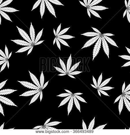 Cannabis Seamless Pattern. Marijuana Leaf, White Weed Plant. Hashish Texture, Isolated Black Backgro