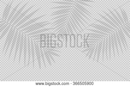 Transparent Shadow Effects. Vector With Shadows On A Transparent Background. Vector Transparent Shad