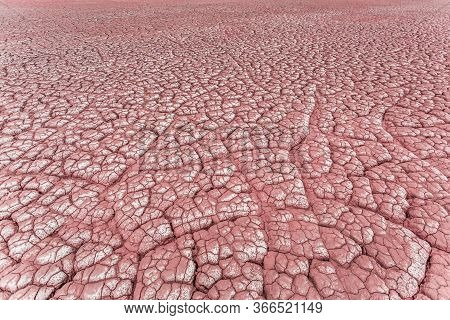 Dry And Cracked Ground Background. Salt Polluted Soil. Global Warming And Climate Change. Environmen