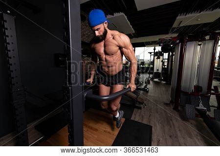 Chest And Triceps Exercise On Parallel Bars