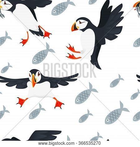Seamless Pattern Atlantic Puffin Bird Cartoon Animal Design Flat Vector Illustration On White Backgr