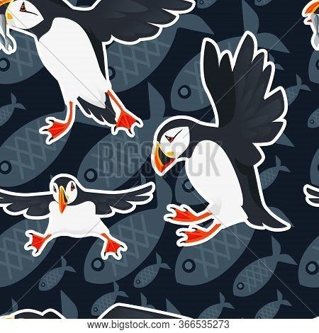 Seamless Pattern Atlantic Puffin Bird Cartoon Animal Design Flat Vector Illustration On Blue Backgro