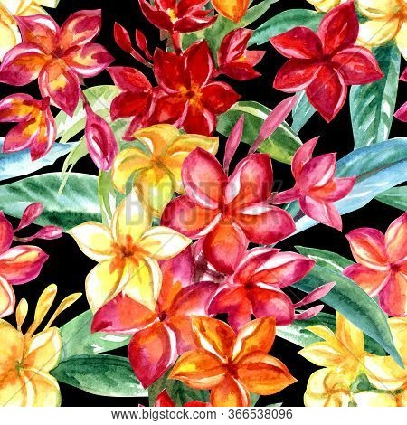 Seamless Pattern Of Tropical Plumeria Flowers On A Black Background, Watercolor Print For Fabric And