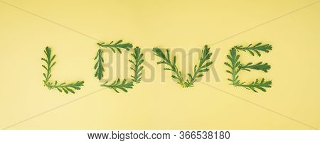 Word Love Made Of Chamomile Leaves On A Light Yellow Background. Romantic Composition Idea.