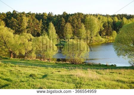 Beautiful Countryside Landscape. Green Meadow And River In The Evening. Summer. Russia.