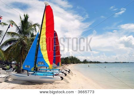 Hobie Beach On Key Biscayne