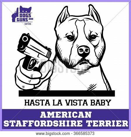 American Staffordshire Terrier Dog With Gun - American Staffordshire Terrier Gangster. Head Of Angry