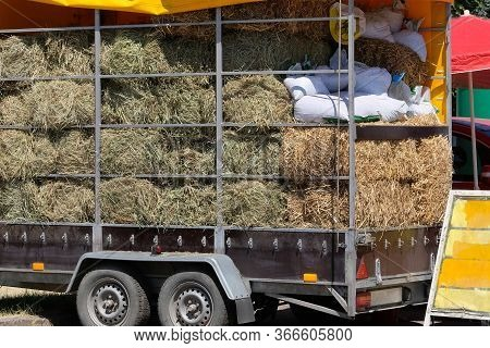 Hay And Straw In A Truck. Hay For Cows, Horses, Goats And Sheep. Аgricultural, Harvest And Farming C