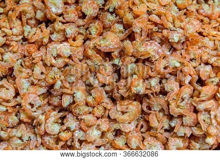 Dried Shrimp. Dried Shrimp Prepared For Cooking In Thailand Market. Dried Shrimp Or Dried Salted Pra