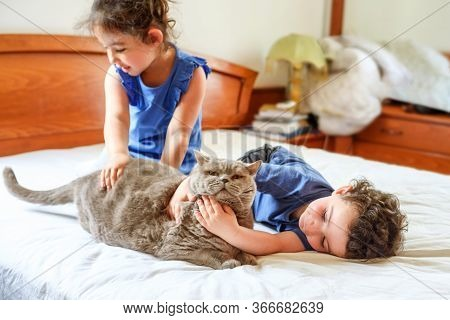 Happy Children With Their Pet Laying On The Bed. Young Boy And Girl Playing With Cat On A Bed In Hom