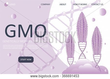 Genetic Engineering Landing Page In Flat Style. Genetically Modified Foods. Food Additives. Dna Reco
