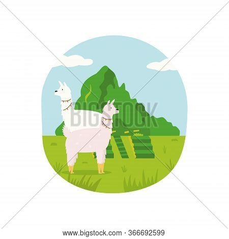 Poster Of Peru With Cute Lama And Famous Landmark Machu Picchu