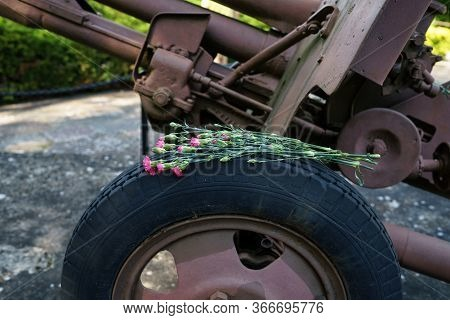 A Bouquet Of Carnations Lies On The Wheel (carriage) Of The Artillery Gun.