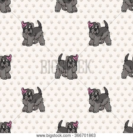 Hand Drawn Cute Schnauzer Breed Puppy With Pink Bow Seamless Vector Pattern. Purebred Pedigree Domes
