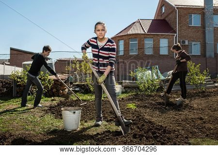 Teenagers Dig A Garden Near A Country House. Spring Preparation For Planting Harvest Concept. Help F