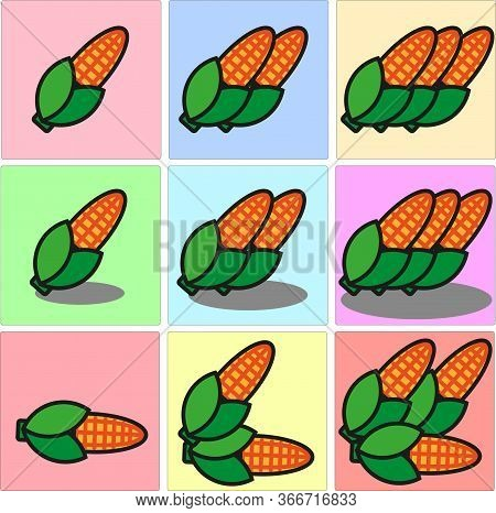 Ear Of Corn, Or Maize, Partially Husked To Show Its Buttery-yellow Kernels One Two Three Set With Sh