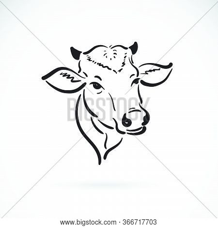 Vector Of A Cow Head Design On White Background. Farm Animal. Cows Logos Or Icons. Easy Editable Lay