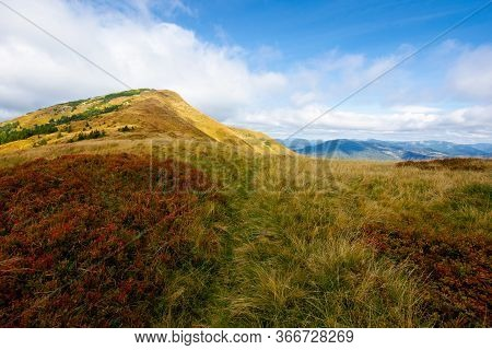 Mountain In Weathered Grass In Autumn. Beautiful Nature Landscape Of Carpathians. Cloudy Sky In The