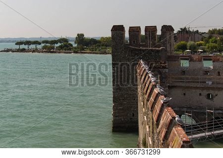 The View Of Gulls On Fortified Wall In A Sunny Day.