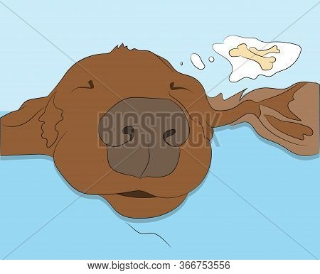 Vector Illustration Of A Portrait Of A Dachshund That Is Sleeping, Color Drawing, Vector, Color Back