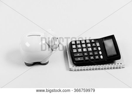 Financial Report. Piggy Bank Money Savings. Banking And Accounting. Financial Support Consulting. Bu