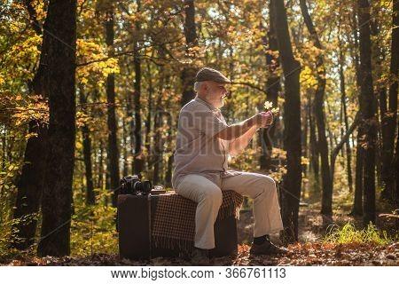 Fresh Autumn Air. Senior Man Relax In Autumn Wood. Retired Person Enjoy Fresh Air On Autumn Landscap